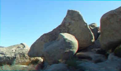 HV Turtle 20140928 3DA 1080P DSCF5733