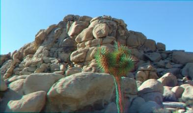 HV Turtle 20140928 3DA 1080P DSCF5746