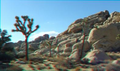 HV Turtle 20140928 3DA 1080P DSCF5763