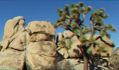 HV Turtle 20140928 3DA 1080P DSCF5764
