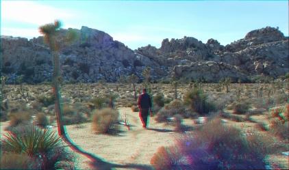 Echo Cove 20150102 3DA 1080p DSCF7034