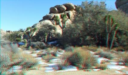 Echo Cove 20150102 3DA 1080p DSCF7041