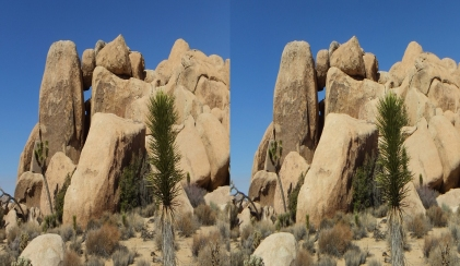 3D Half Side-by-Side (for 3D TV viewing)