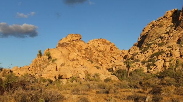 Bubba Rock (back center)