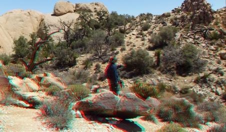 Desert Queen Mine 20150427 3DA 1080p DSCF9608