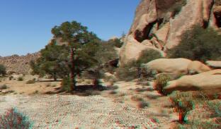 Desert Queen Mine 20150427 3DA 1080p DSCF9637