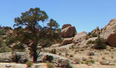 Desert Queen Mine 20150427 3DA 1080p DSCF9645
