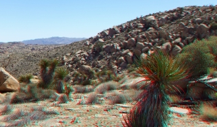 Desert Queen Mine 20150427 3DA 1080p DSCF9700