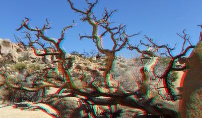 Desert Queen Mine 20150427 3DA 1080p DSCF9710