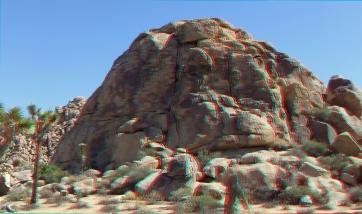 North Wonderland Bear-Island-3da-1080p-dscf7973