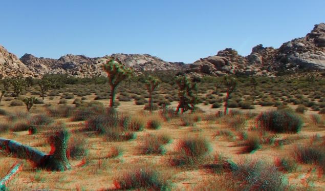 Parking Lot Rocks 3DA 1080p DSCF2436