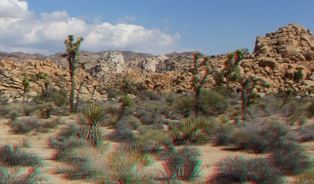 Wonderland of Rocks Joshua Tree NP 3da-1080p-dscf9162