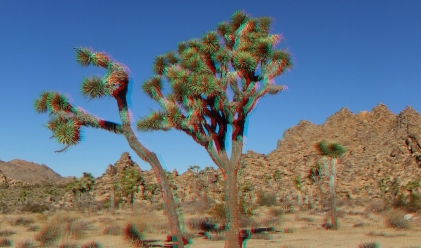 Quail Springs Area 20121228 3DA 1080p DSCF8665