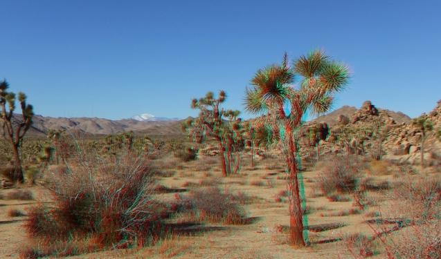 Quail Springs Area 20121228 3DA 1080p DSCF8679
