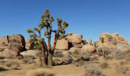 Quail Springs Area 20121228 3DA 1080p DSCF8743