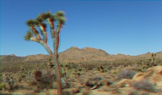 Quail Springs Area 20141105 3DA 1080p DSCF5859