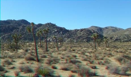 Quail Springs Area 20141105 3DA 1080p DSCF5925