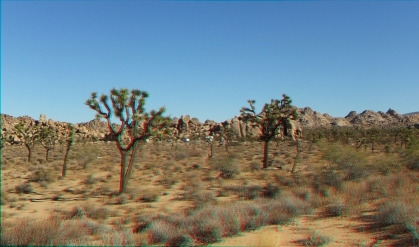 Quail Springs Area 20141105 3DA 1080p DSCF5948