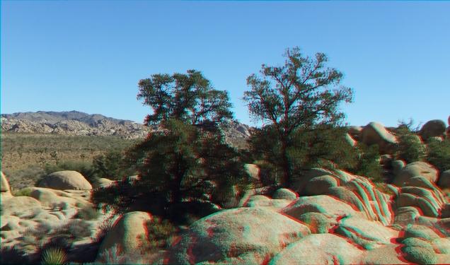 Quail Springs Area 20141105 3DA 1080p DSCF6082