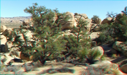 Quail Springs Area 20141105 3DA 1080p DSCF6221