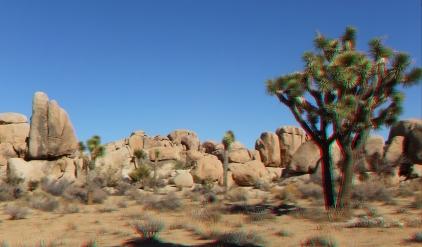 Quail Springs Area 20141105 3DA 1080p DSCF6372