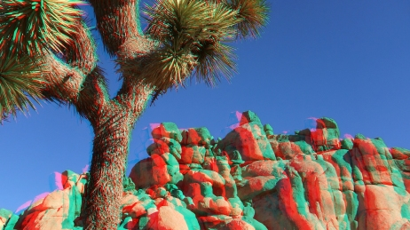 Quail Springs Area 20141222 3DA 1080p DSCF0116