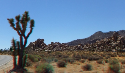Quail Springs Picnic Area 3DA 1080p DSCF0526