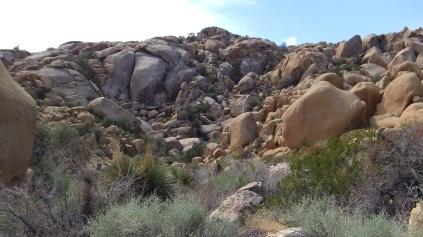 Vector Rock left of center