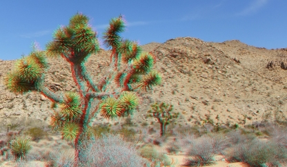 Johns Camp 20140324 3DA 1080p DSCF2996