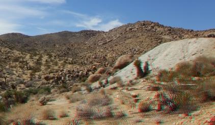 Johns Camp 20140324 3DA 1080p DSCF3133