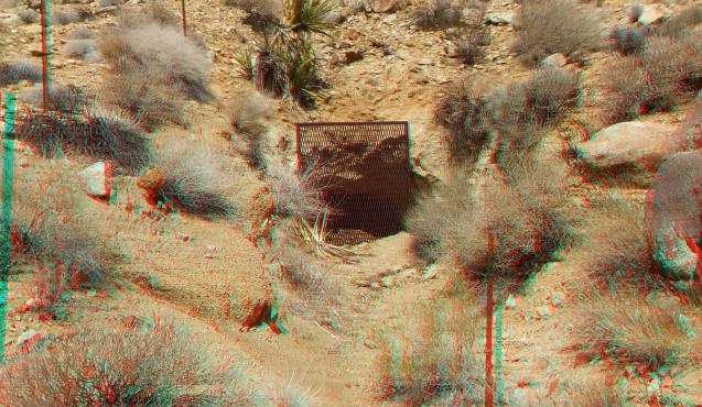 Johns Camp 20140324 3DA 1080p DSCF3135