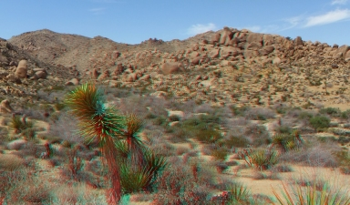 Loveland 20140324 3DA 1080p DSCF3207