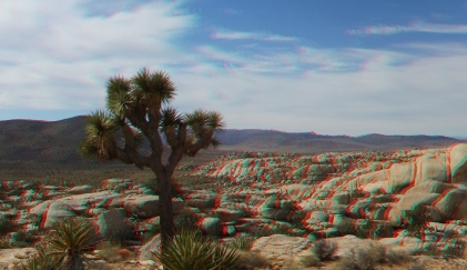 Wonderland Far East 20131013 3DA 1080p DSCF6684