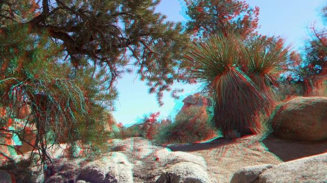 Wonderland Valley 20130222 3DA 1080p DSCF1715