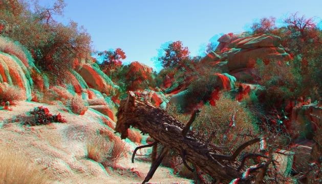 Wonderland Valley 20130222 3DA 1080p DSCF1718