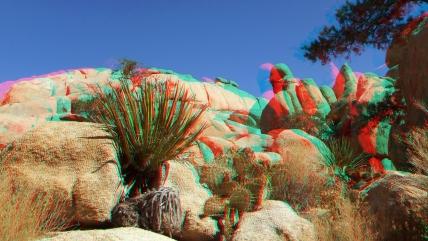 Wonderland Valley 20130222 3DA 1080p DSCF1762