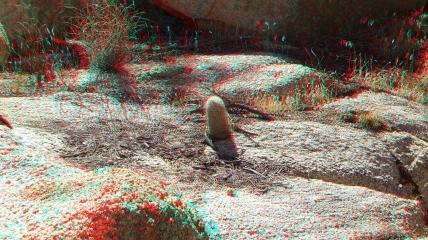 Wonderland Valley 20130222 3DA 1080p DSCF1769
