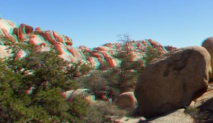 Wonderland Valley 20130222 3DA 1080p DSCF1835