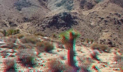 Lost Horse Mine 20140101 3DA 1080p DSCF0237