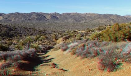 Lost Horse Mine 20140101 3DA 1080p DSCF9953