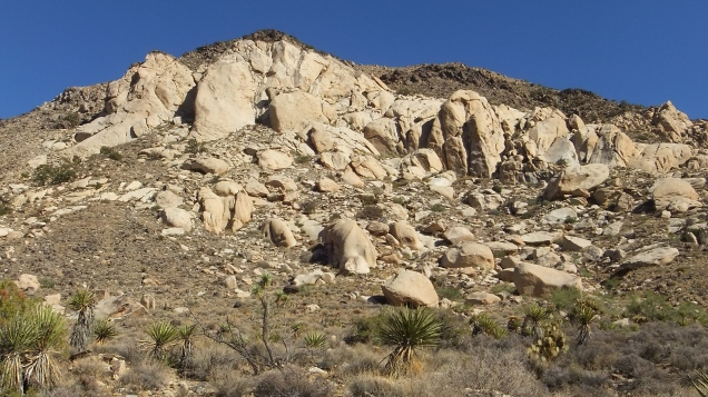 cowboy-crags-joshua-tree-np-dscf5091