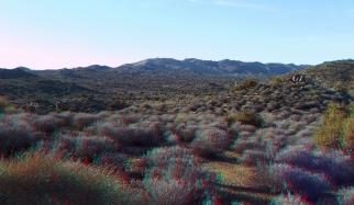 Lost Horse Mine 20140101 3DA 1080p DSCF0452