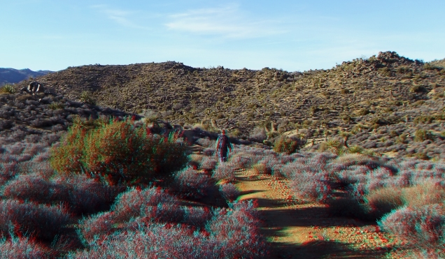 Lost Horse Mine 20140101 3DA 1080p DSCF0453