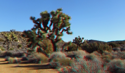 Lost Horse Mine 20140101 3DA 1080p DSCF0456