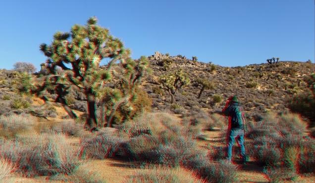 Lost Horse Mine 20140101 3DA 1080p DSCF0458