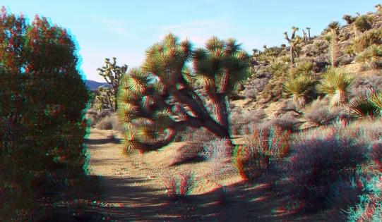 Lost Horse Mine 20140101 3DA 1080p DSCF0460