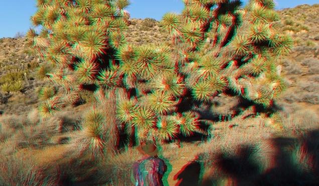 Lost Horse Mine 20140101 3DA 1080p DSCF0468