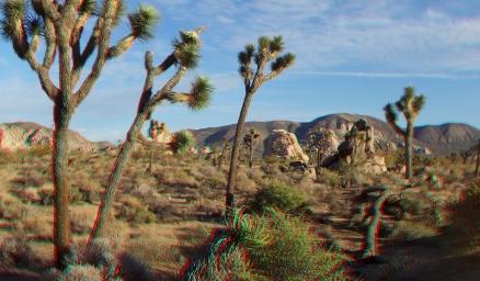 Outback West 3DA 1080p DSCF7584