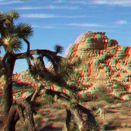Outback West 3DA 1080p DSCF7591
