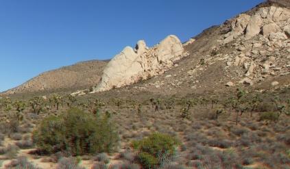 saddle-rocks-joshua-tree-np-3da-1080p-dscf4980